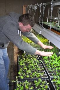 A volunteer holds his hands over trays of seedlings under a heat lamp